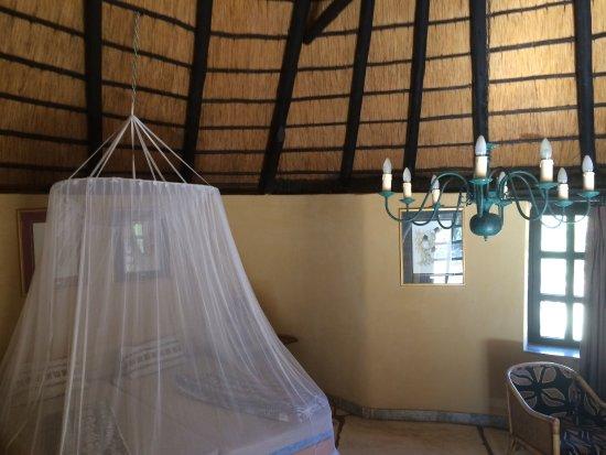Okambara Elephant Lodge: photo5.jpg