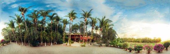 Hotel La Laguna del cocodrilo: foto principale