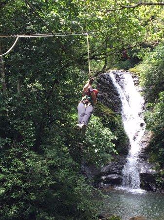 Miramar, Costa Rica: Ziiiiipppp!