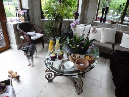 Scarva, UK: Murphy joining us for breakfast