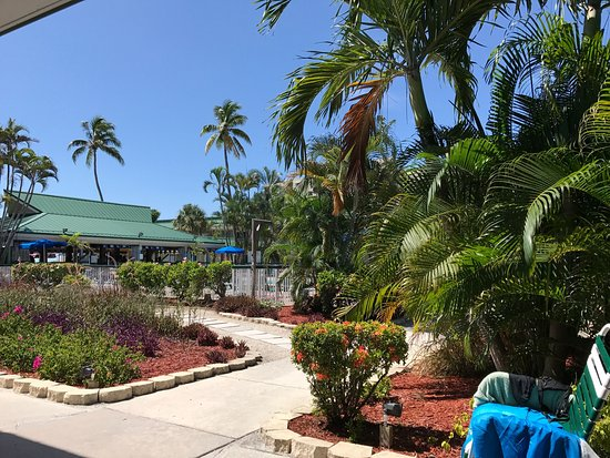 Bild Von Wyndham Garden Fort Myers Beach Fort Myers Beach Tripadvisor