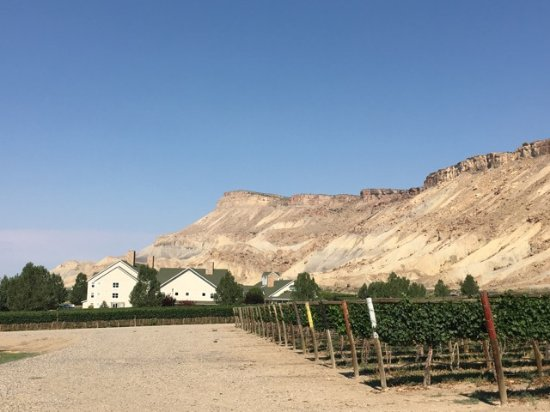 Palisade, CO: View of hotel from winery