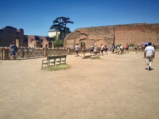 Rome Coliseum Guided Tours : The Coliseum grounds...
