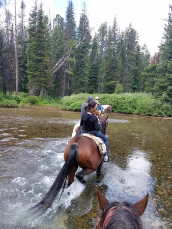 Skyline Guest Ranch and Guide Service Photo