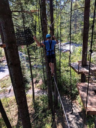 Stevenson, WA: Skamania Lodge Zipline Tour Obstacle Course