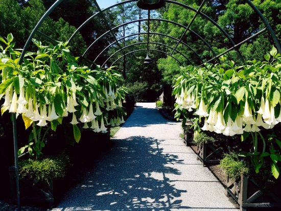 Longwood Gardens Path To 1906 Picture Of 1906 At Longwood Gardens Kennett Square Tripadvisor