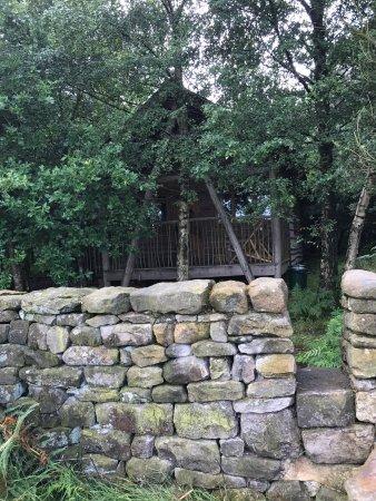 Swinton Bivouac Yurts & Tree Lodges: photo5.jpg