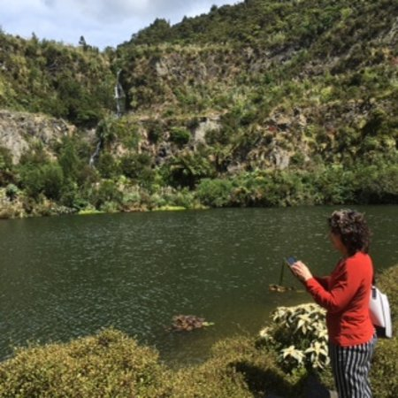 Whangarei, Selandia Baru: The lake at the bottom of the quarry. Walks all round and to the top and waterfalls