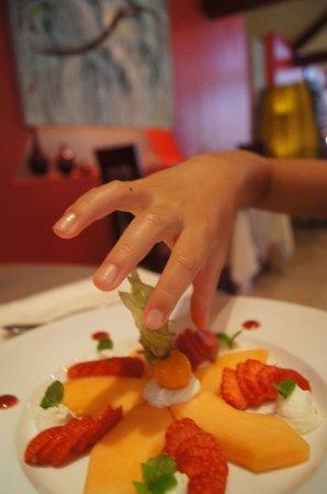 Vosne-Romanée, France : assiette de fruits (ma fille ne voulait pas de la glace du menu enfant, et le serveur lui a appo
