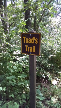 Independence, IA: If you don't want to ride the trailer out to Cedar Point, take a short walk on Toad's Trail.