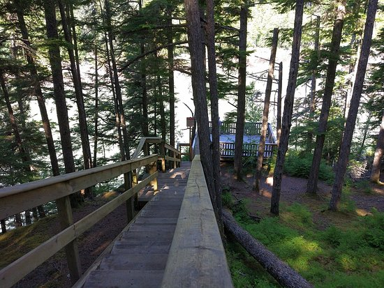 Terrace, Kanada: Boardwalk steps to the viewing platform at the river
