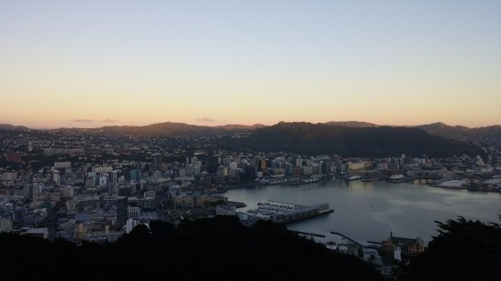 Mount Victoria: Full View of Wellington on sunrise hike