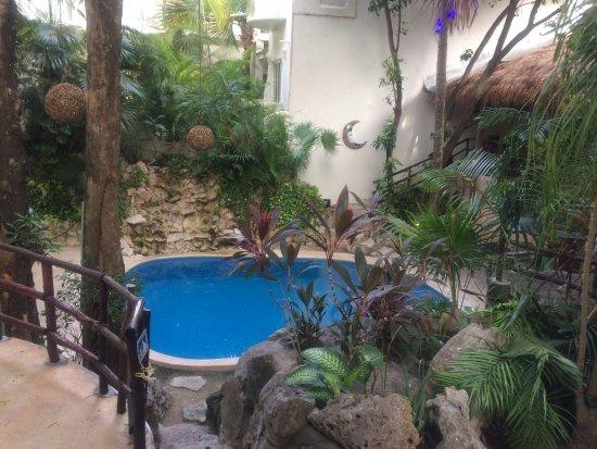 Luna Blue Hotel: piscina interior de dia