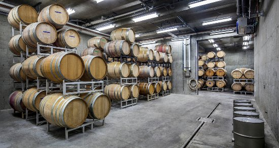 Lillooet, Canadá: Our barrel cellar where our red wines (and some white wines) age.