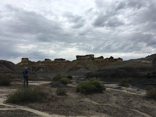 Bisti/De-Na-Zin Wilderness : Bisti