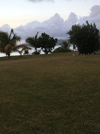 Newcastle, Nevis: St Kitts near