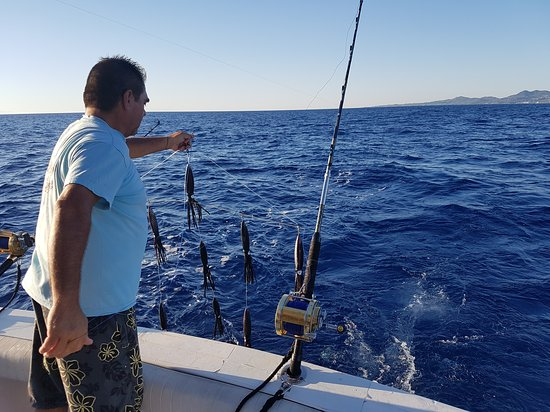 Zakynthos, Yunanistan: Profesional guidance and top equipment but most of all an exciting and wonderful day on the sea!