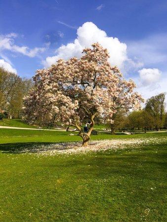 Roubaix, França: photo0.jpg