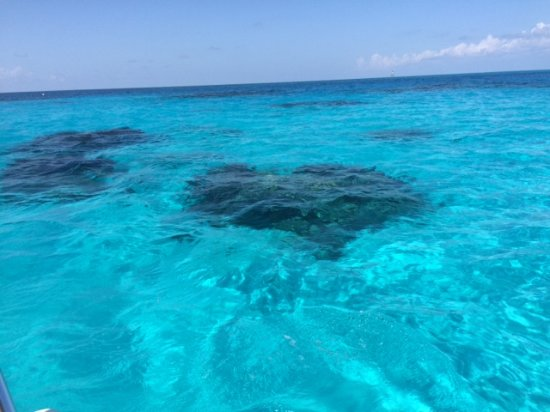 Somerset Village, Bermuda: Heart-shaped reef...Under The Sea!