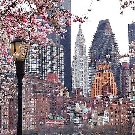 Sketty, UK: New York 🇺🇸
