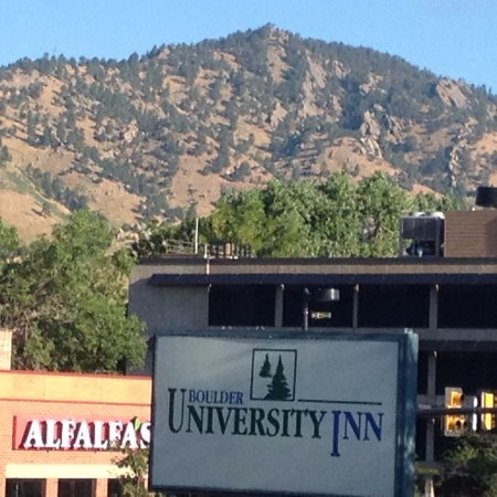 Boulder University Inn: Alfalfa's a unique grocery store, across the street