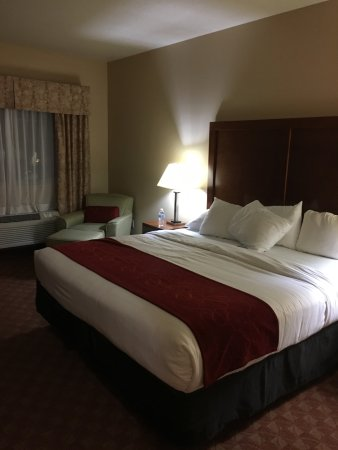 Comfort Inn Newport Photo
