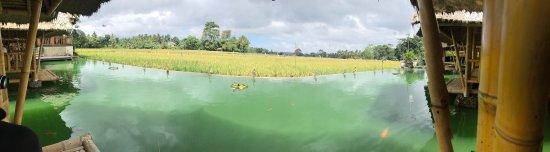Lodtunduh, إندونيسيا: photo4.jpg
