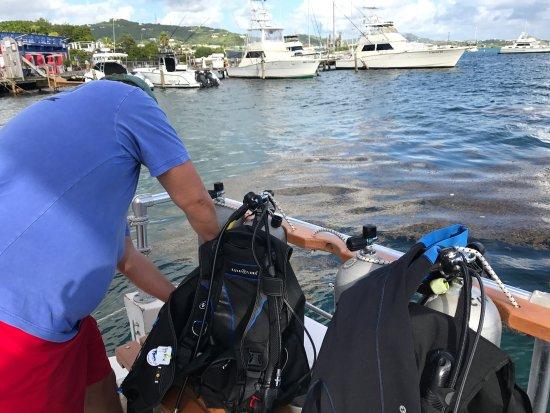 St. Croix Ultimate  Bluewater Adventures (SCUBA), Inc. Photo