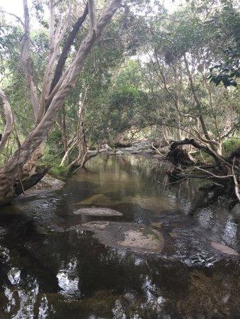 Mareeba, Avustralya: photo2.jpg