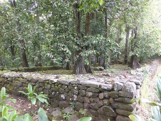 Moorea, Frans-Polynesië: Lower Marae