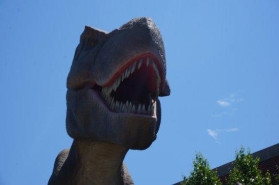 บรุกกิงส์, เซาท์ดาโคตา: T-Rex!