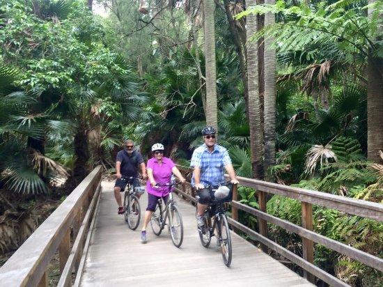 Narrabeen, Australia: Bikes on rainforest bridge