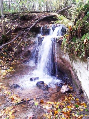 Sigulda, Łotwa: Dauda waterfall