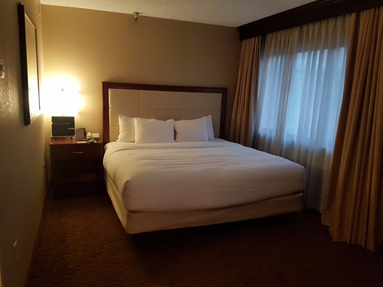 DoubleTree Suites by Hilton Hotel Cincinnati - Blue Ash : King Bed with TV