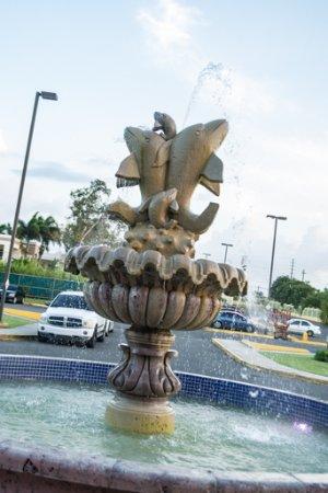 Hotel Punta Maracayo: Hotel entrance fountain