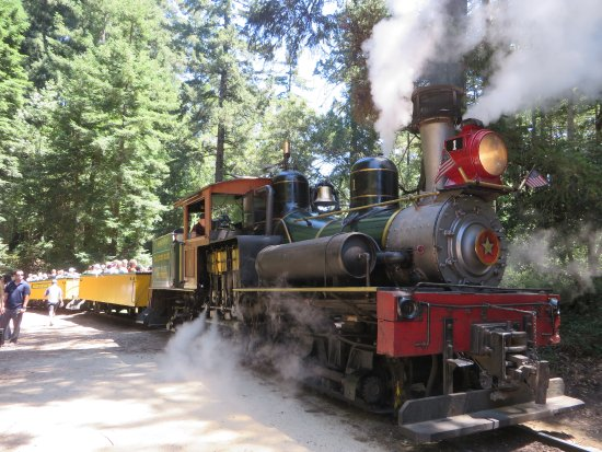 You should take you and your family to the Roaring Camp Steam Train that travels through the beautiful Santa Cruz Redwoods Forest. You can enjoy a great open air car where everything can be seen 80 miles south of San Francisco where ancient Redwoods can be viewed in a once in a lifetime ride on an s train.