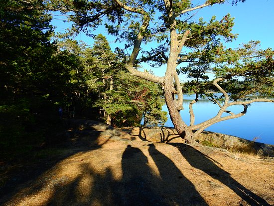 Oak Harbor, WA: One of the hiking trails