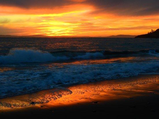 Oak Harbor, WA: Sunset on the beach