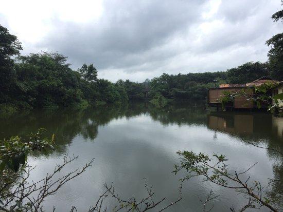Ratnapura, Sri Lanka: photo1.jpg