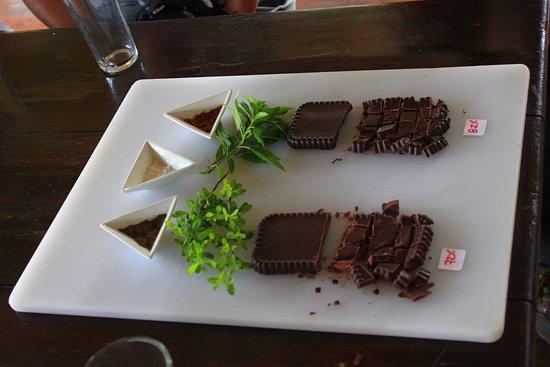 La Anita Rainforest Ranch: Samples of chocolate grown and prepared at La Anita