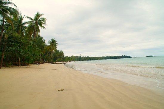 Coconut Beach (Khao Lak, Thailand) - omdömen - TripAdvisor