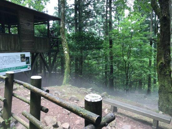 Toon, Japonia: 風穴は天然のクーラー! 夏、岩から吹き出る冷気は寒いくらい。