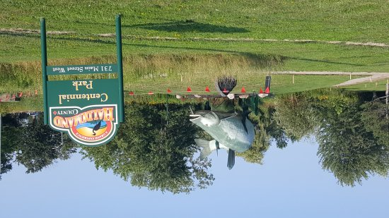 Dunnville, Canadá: Muddy the Mudcat Statue