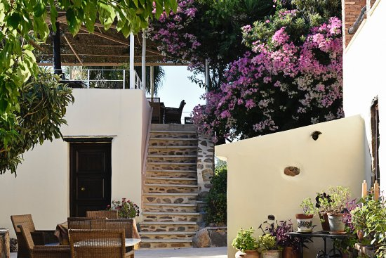 Elia Traditional Guesthouse: Steps up to the Terrace where meals are taken