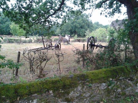Saint-Lyphard, France: D'anciennes machines agricoles