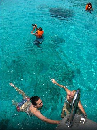 Ko Racha, Tajlandia: Это необитаемый остров Рача Ной. Брали катер на день на 8 человек с Пхукета