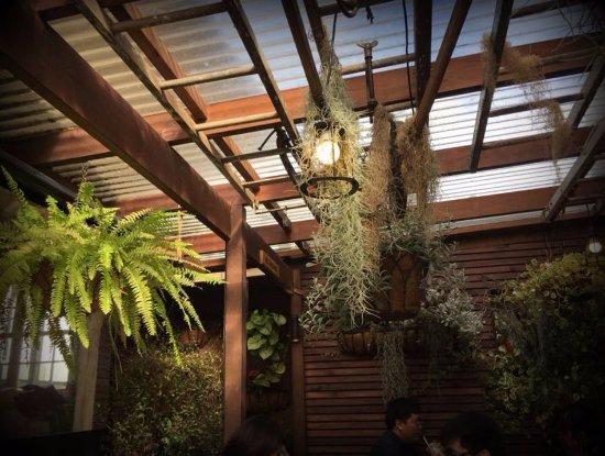Light detail on the porch obr zek za zen the garden for Garden shed tripadvisor