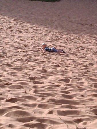 Merthyr Mawr Sand Dunes : My ball's gone
