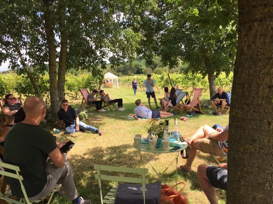 Cannington, UK: Post- Wedding brunch in our picnic area
