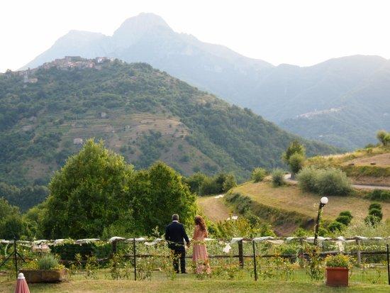 Agriturismo Summer Photo